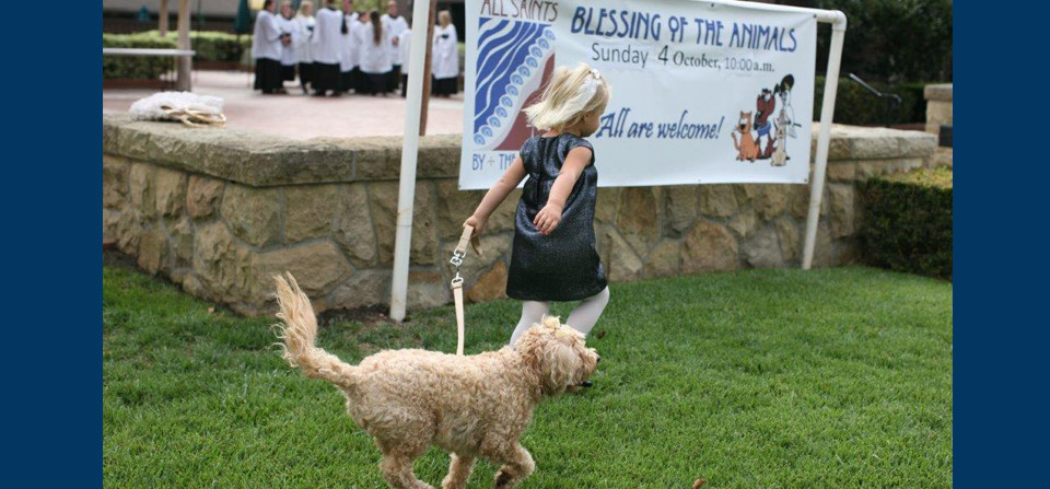 Click the Photo to See the 2015 Blessing of the Animals!