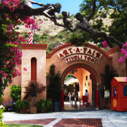 All Saints Heading to Laguna Beach Art Festivals in July